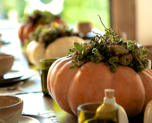 orange pumpkin table setting